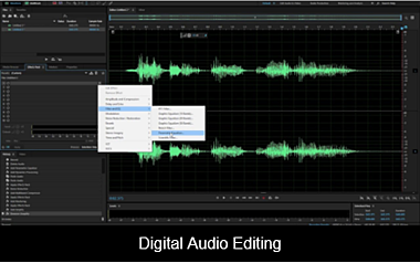 Digital Audio Editing image